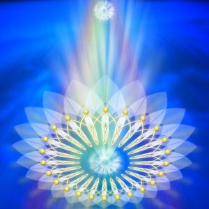 Journey to Higher Consciousness